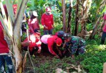 Cegah Tanah Longsor,Ini yang Ditanam TNI