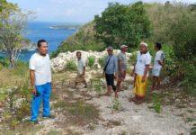 """Proyek Jalan """"Caplok"""" Hutan Lindung, Pemerintah Diminta Tak Lakukan Ini"""