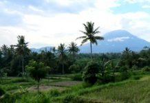 Setahun Tak Erupsi, Gunung Agung akan Turun Status