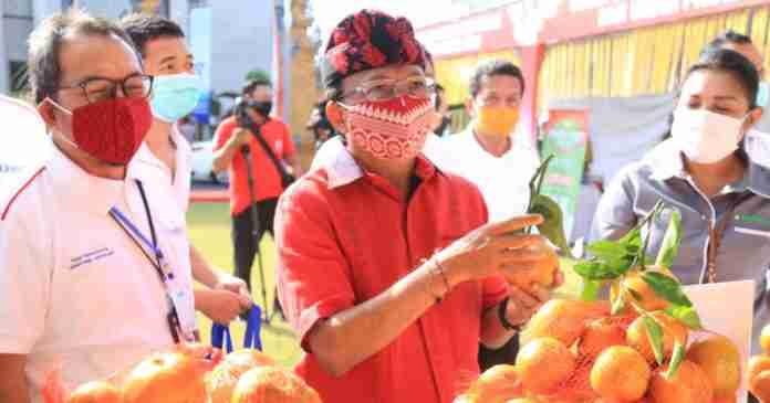 Pertanian Kini Jadi Penyelamat Perekonomian Bali