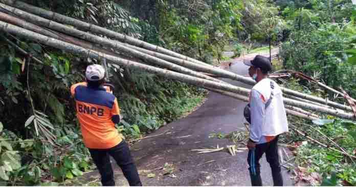 Hujan Semalaman di Bangli, Ini Dampak yang Ditimbulkan