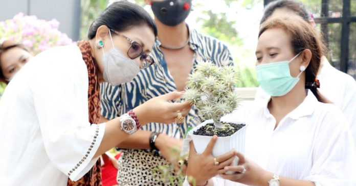 Kembangkan Potensi Lokal, Bunda Putri Lirik Anggrek Bali