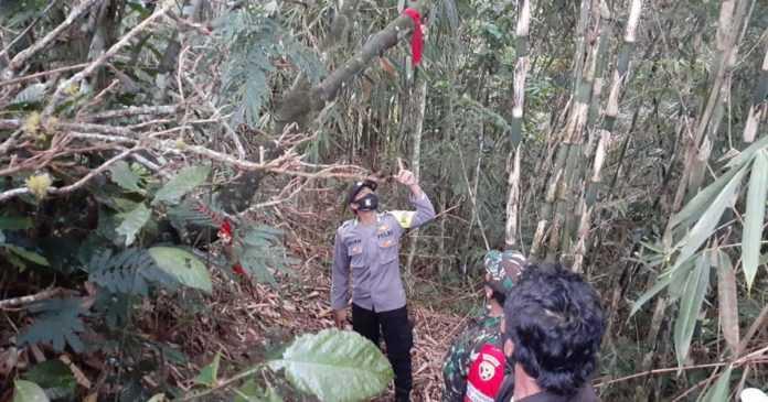 Seorang Petani Bayung Gede Gantung Diri di Pohon Kaliandra