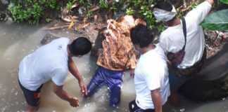 Pria Paruh Baya Tewas di Pinggir Sungai