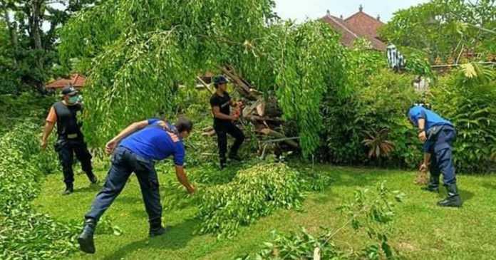 Antisipasi Cuaca Buruk, BPBD Denpasar Imbau Bentuk Posko Kesiapsiagaan