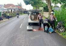 Hantam Bus Damri, Pengendara Motor Tewas