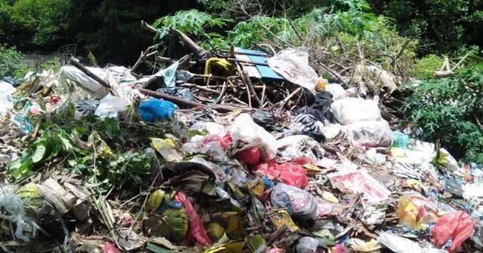 Sikapi TPA Liar di Depan Lagoon, Lurah Benoa Minta Instansi Terkait Evakuasi Sampah