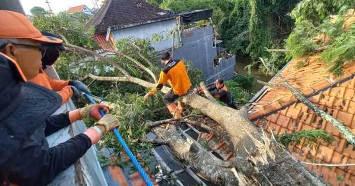 Kerugian Bencana Puting Beliung di Klungkung Capai Rp 130 Juta